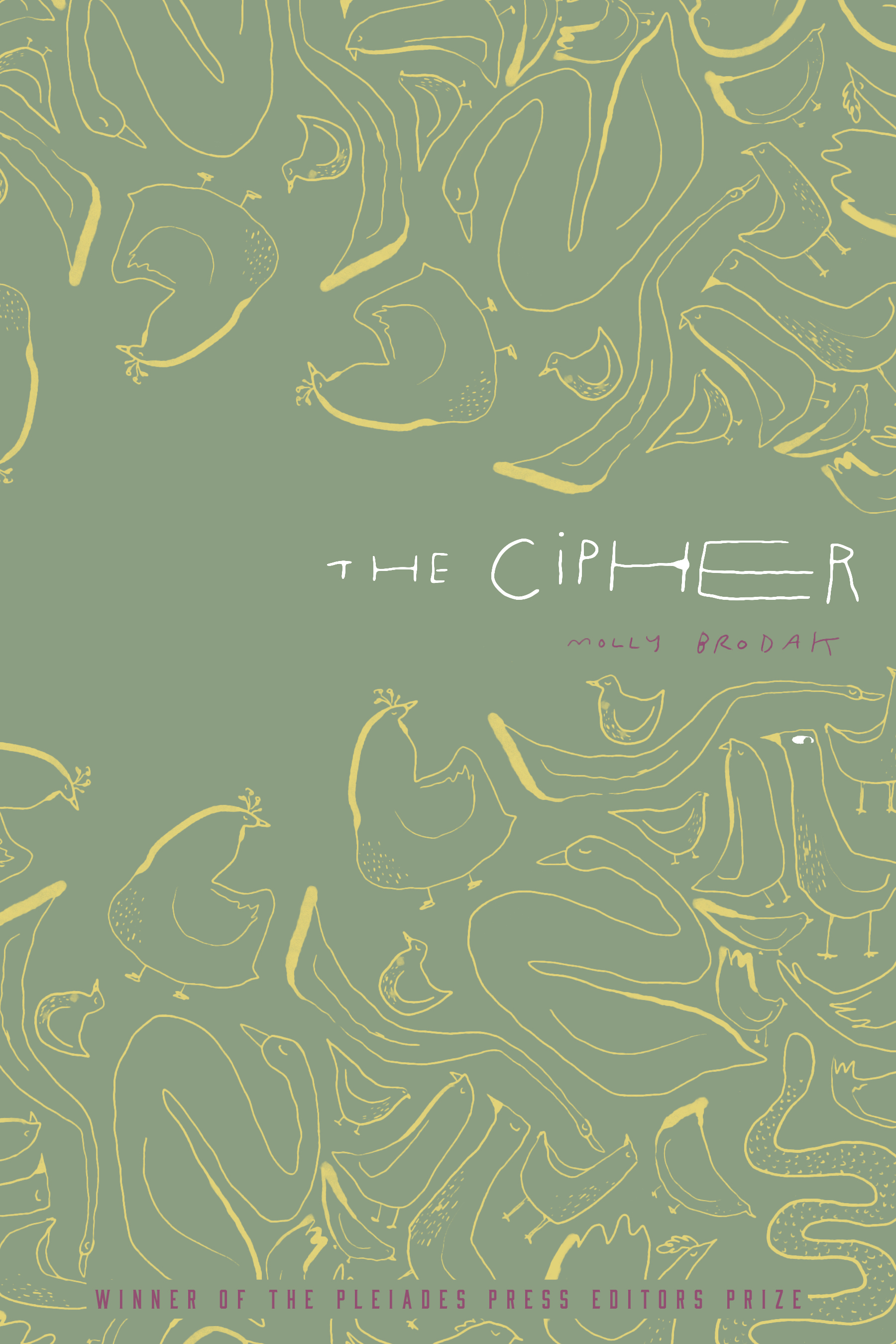 The Cipher by Molly Brodak