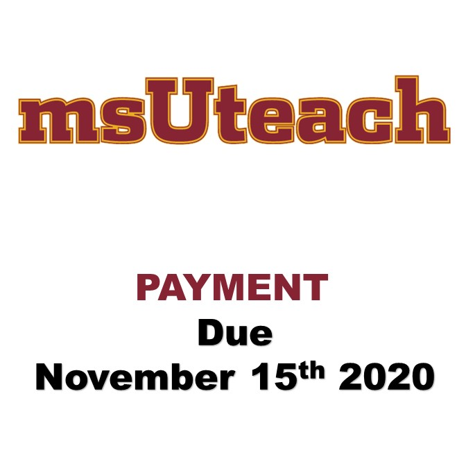 msUteach Certification - $970 4th payment