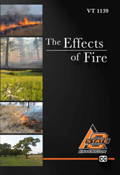 The Effects of Fire DVD (Quantity 1-25)