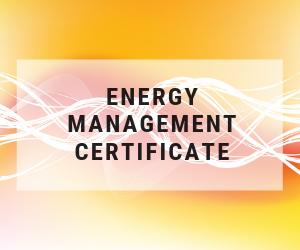 Course 3: Apply Energy Entrepreneurial Skills to the Energy Industry