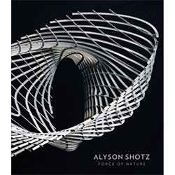 Alyson Shotz: Force of Nature