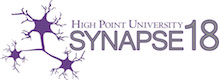 Faculty Registration for SYNAPSE 2018 - Credit Cards Only
