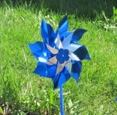 1 box of 240 individual Pinwheels ( for PCA GA COUNCILS)