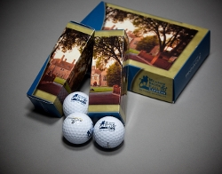 Golf Balls/Sleeve
