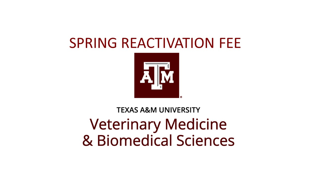 Spring Re-activation Fee