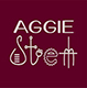 Aggie STEM Summer Camps One Week: All Girls Camp 2018