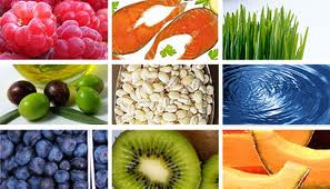 Nutrition and Food Science Dietetic Internship Program Full Payment Option
