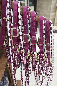 Horse Halter & Lead - Average 600-900 lbs
