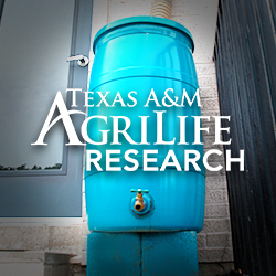 August 2, 2018 Rain Barrel Class (Lewisville)