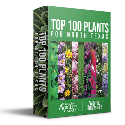 Top 100 Plants for North Texas Deck of Cards