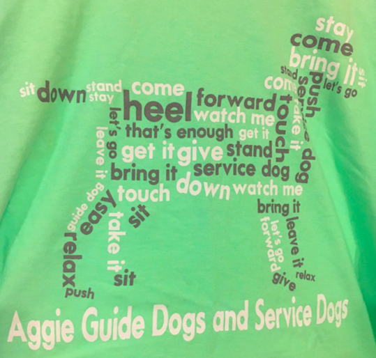 Collage of Training Words T-Shirt