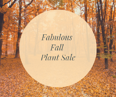 Fabulous Fall Online Plant Sales 2020
