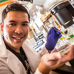 Undergraduate Research in Molecular Biosciences